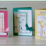 Juin 2013 : Trio de cartes par Marianne (die MB, perfo)