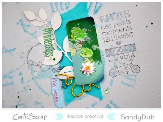 printemps__nenuphar_sandydub_cartoscrap_detail.jpg