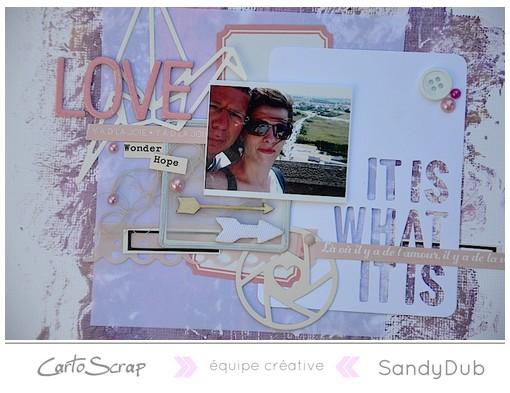 love_sandydub_detail.jpg