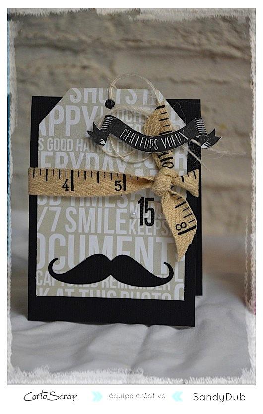 carte_1_an_cartoscrap_moustache.jpg