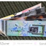 SandyDub : mini album «Happy Day»