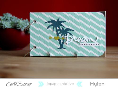 mylen r aliser un mini album project life cartoscrap. Black Bedroom Furniture Sets. Home Design Ideas