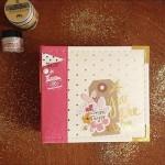 Mini-album «Essayages»