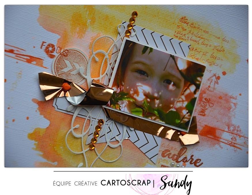 adore this photo SandyDub Carto Fev detail
