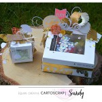 Sandy : Pas à pas – boite cadeau or et transparence