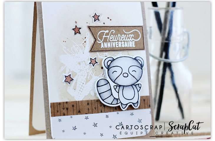 carte-carto3