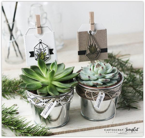 Id e cadeau des succulentes avec du scrap cartoscrap - Idee cadeau avec photo ...